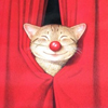 c 1995 kunio sato   red nose cat